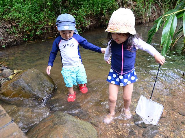 どんな昆虫が捕まるかな?森と水辺生き物探しプログラム